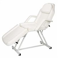 Dual-purpose Basic Facial Chair